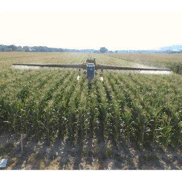 Agricolt Brandoni | Grandi Colture nelle Marche