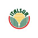 Logo ITALSUR